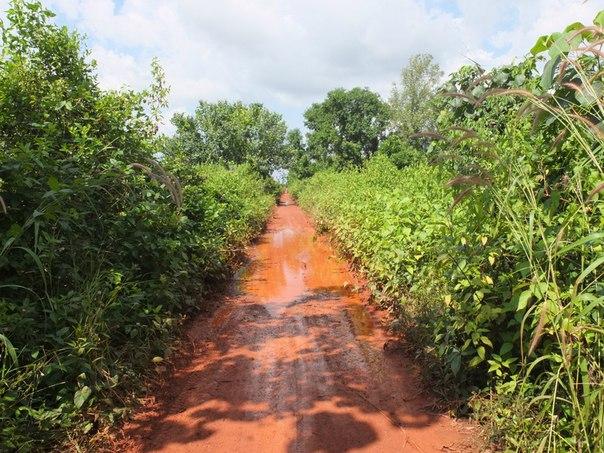Красные дороги Камбоджи