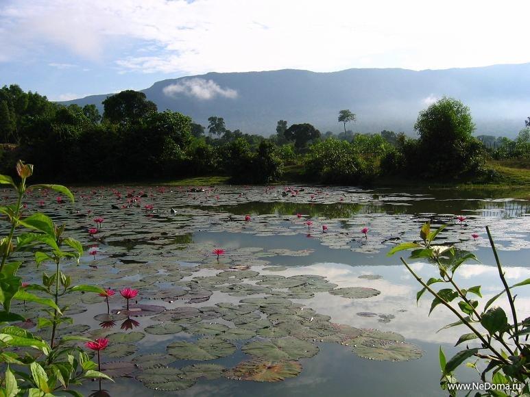Гора Пном Бокор