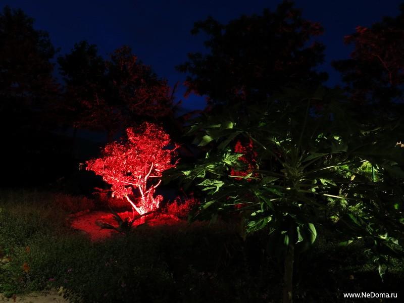 Грин Хаус ночью