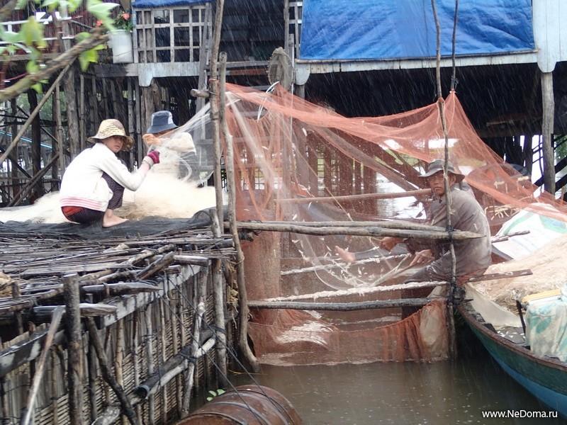 Выбивание рыбы из сеток