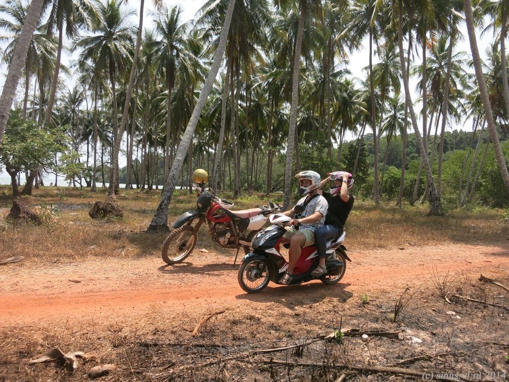 поездка по дорожкам в джунглях